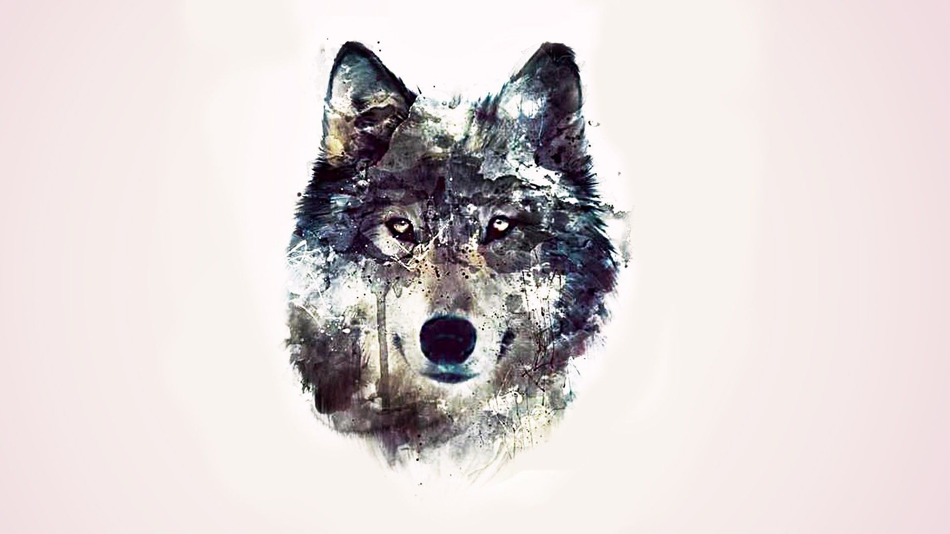 pin wallpaper cool wolf - photo #48