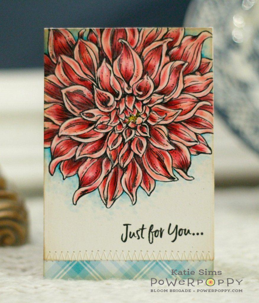 dahlia xl stamp set  poppy cards flower stamp greeting