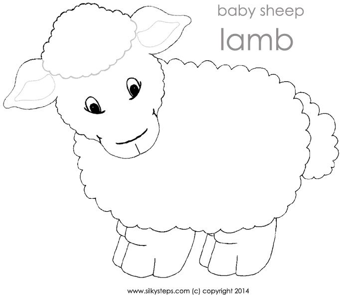 Sheep Lamb Outline Template For Playdough Activity Szycie