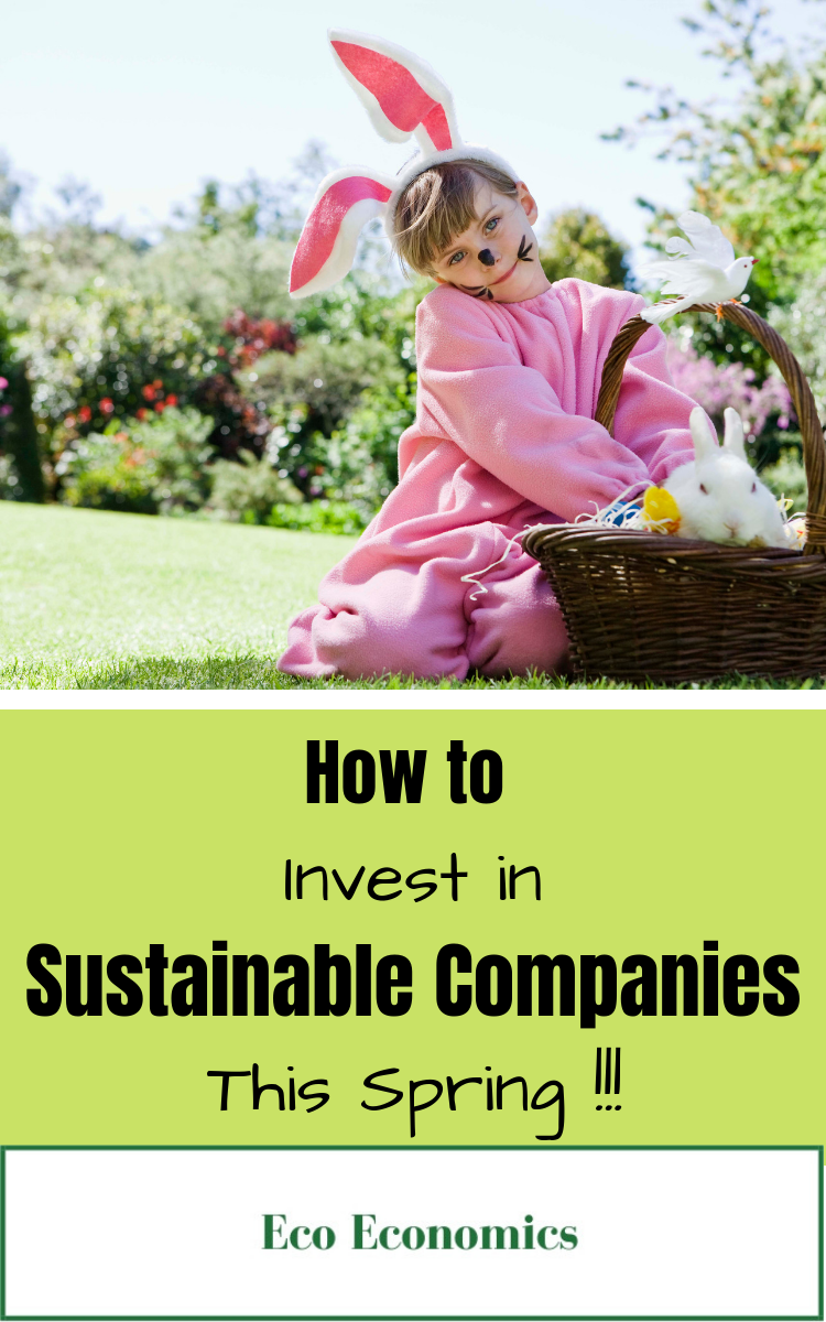 Saving For Retirement By Investing In Sustainable Companies With