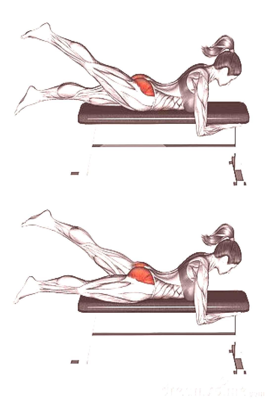 #weightlifting #femalefitness #fitnessmodels #paigehathaway #gewichtheben #fitquotes #philheath #wor...