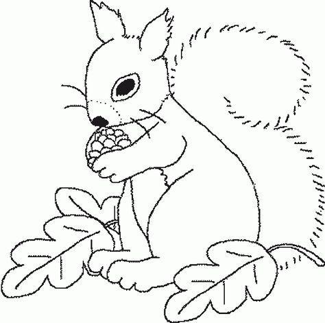 eichhörnchen 14 … | herbst ausmalvorlagen, eichhörnchen, eichhörnchen malen