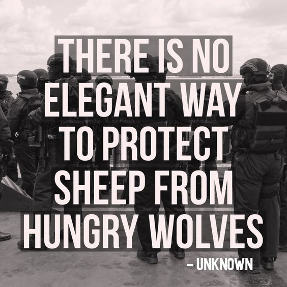 """""""There Is No Elegant Way To Protect Sheep From Hungry"""