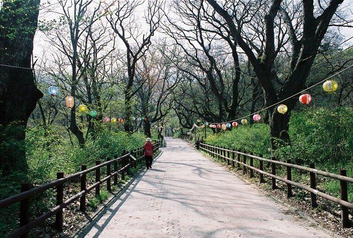 pemandangan indah di korea koreahttp pemandanganoce blogspot