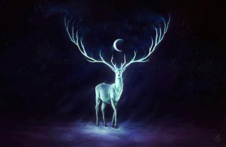 White stag hart pinterest mythological creatures and shamanism white stag voltagebd Choice Image