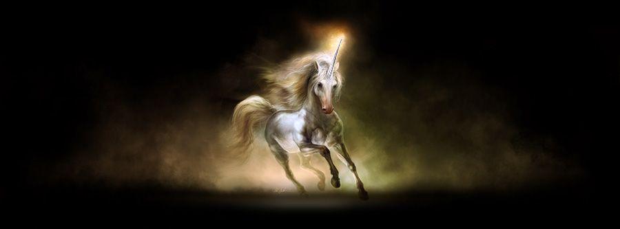 Unicorn - Kirsi Salonen