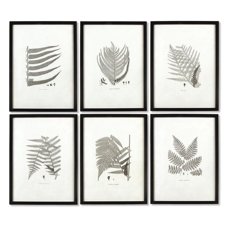 Napa Home and Garden Framed Fern Print Wall Panel Set of