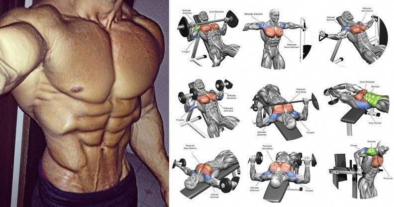 get ripped men Chest workouts, Chest workout for men