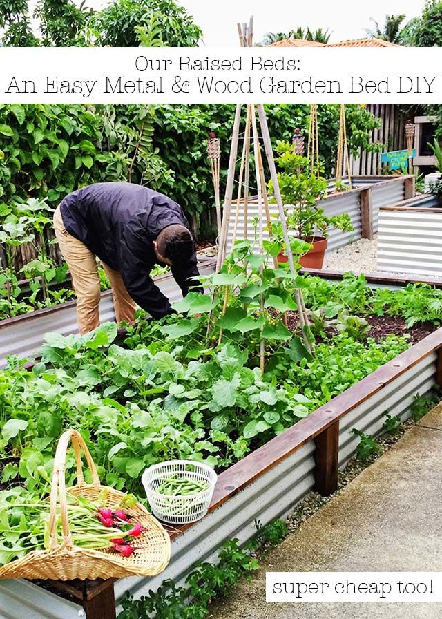 DIY Garden Bed Ideas | Wood gardens, Gardens and Easy