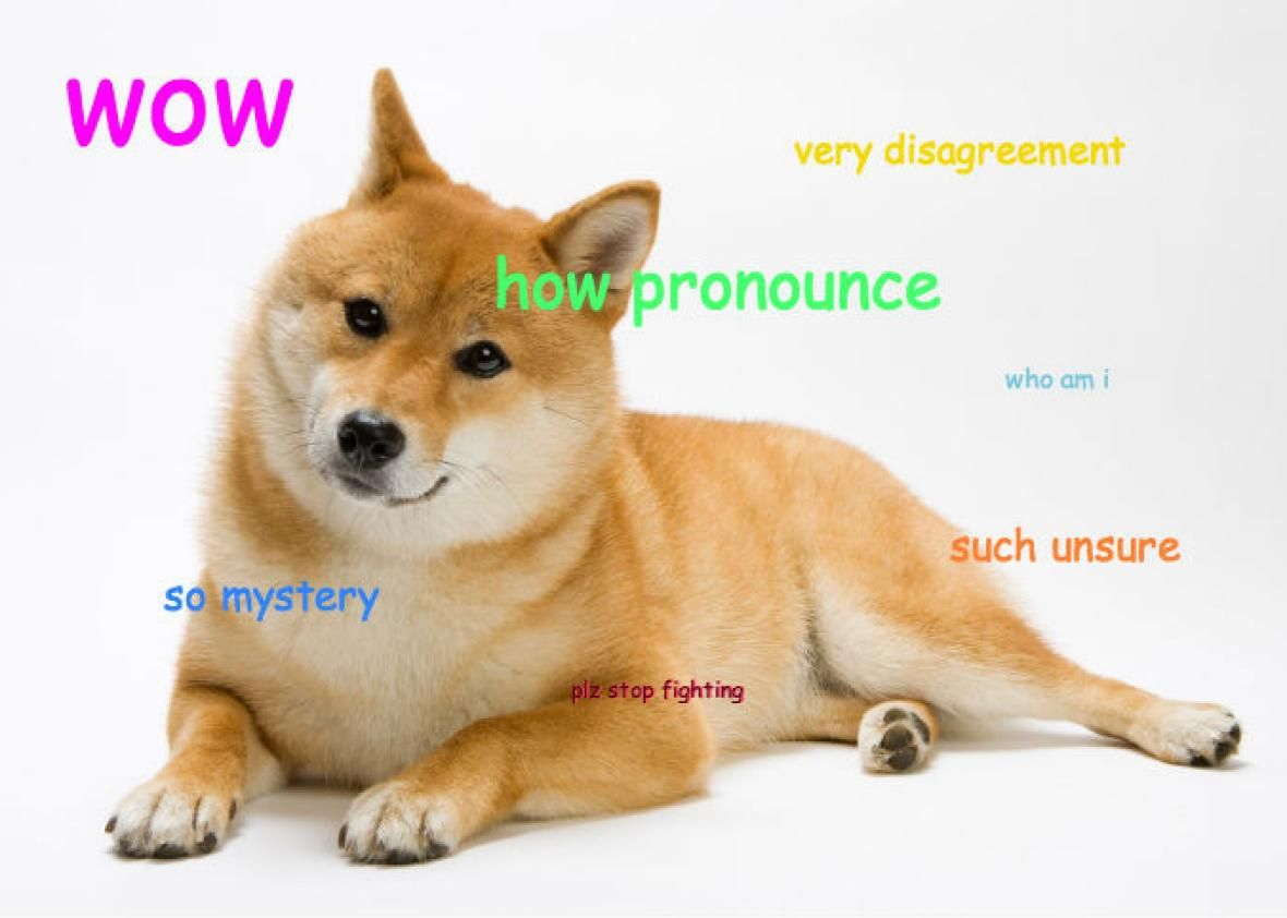 Wowmuch ownership what happened to the shiba inu when the breed animal solutioingenieria Choice Image