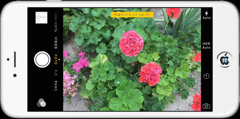 Lee Cómo bloquear el enfoque y la exposición automática de la cámara del iPhone