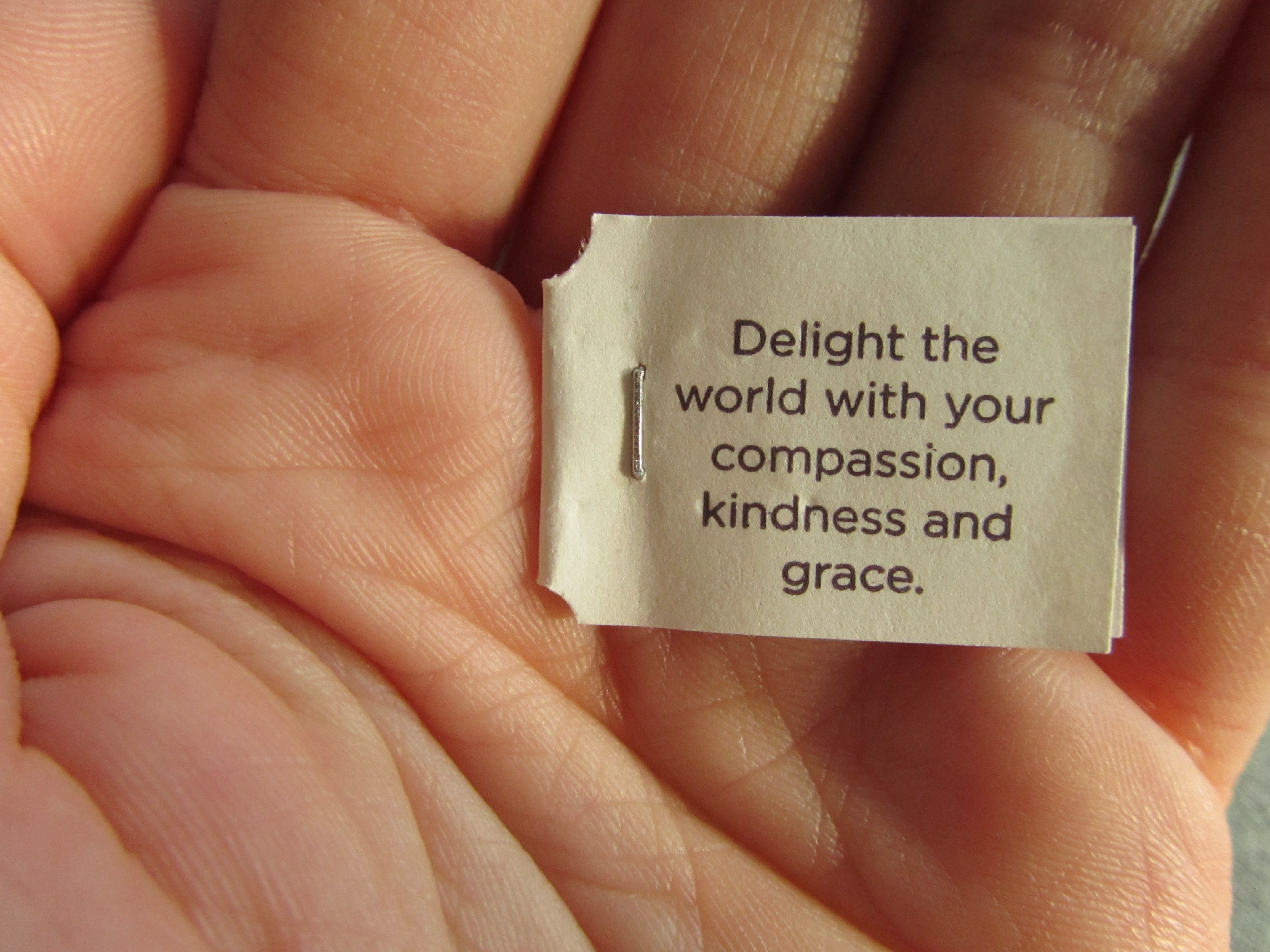 Delight The World With Compassion, Kindness, and Grace