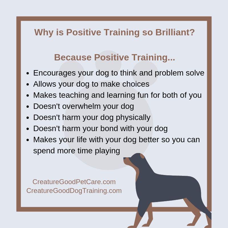 Pin By Creature Good Dog Training On Dog Training Dog Daycare