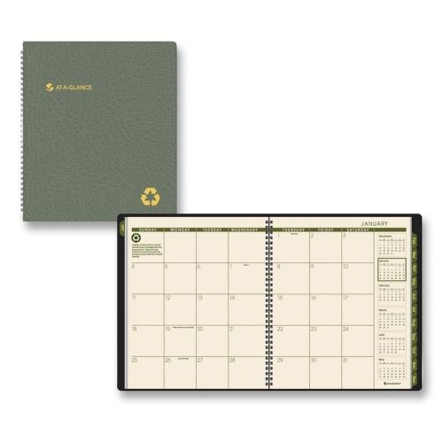 AtAGlance Professional Desk Planner  Monthly Appointment