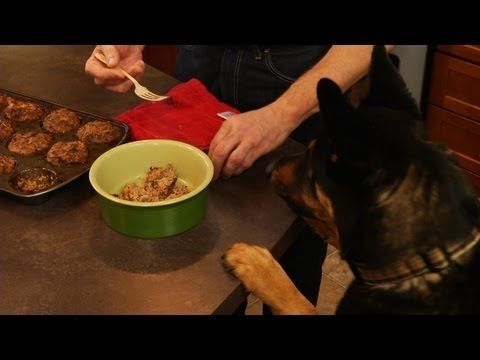 Healthiest Best Dog Food Anywhere Georgie Meatloaf Secret