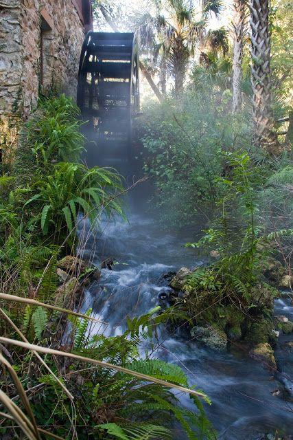 The Springs Rv Resort Florida
