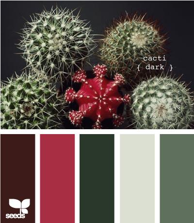 cacti dark