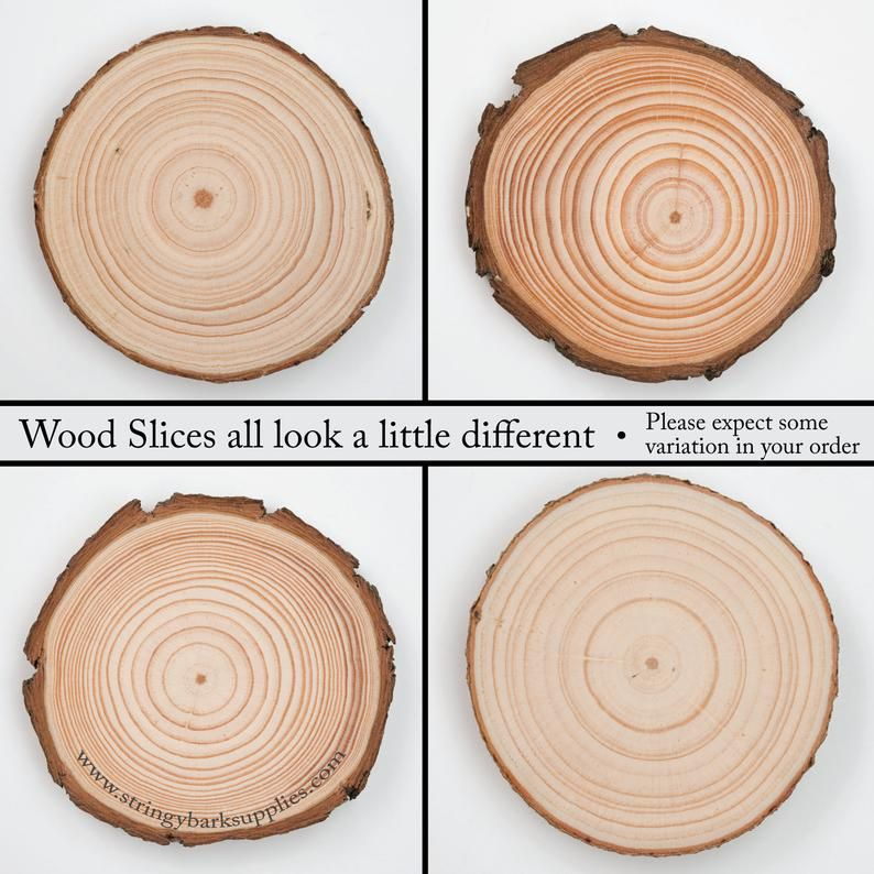 100 Pack 4 6 Cm Wood Slices 2 Inch Wood Slices Bulk Wood Slices Bulk Tree Slices Small Wood Slices For Crafts In 2020 Wood Slices Save The Date Magnets Rustic Wood