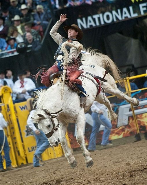 DANGEROUS SPORT. World Champion Cody Wright of Utah competes in the Saddle…