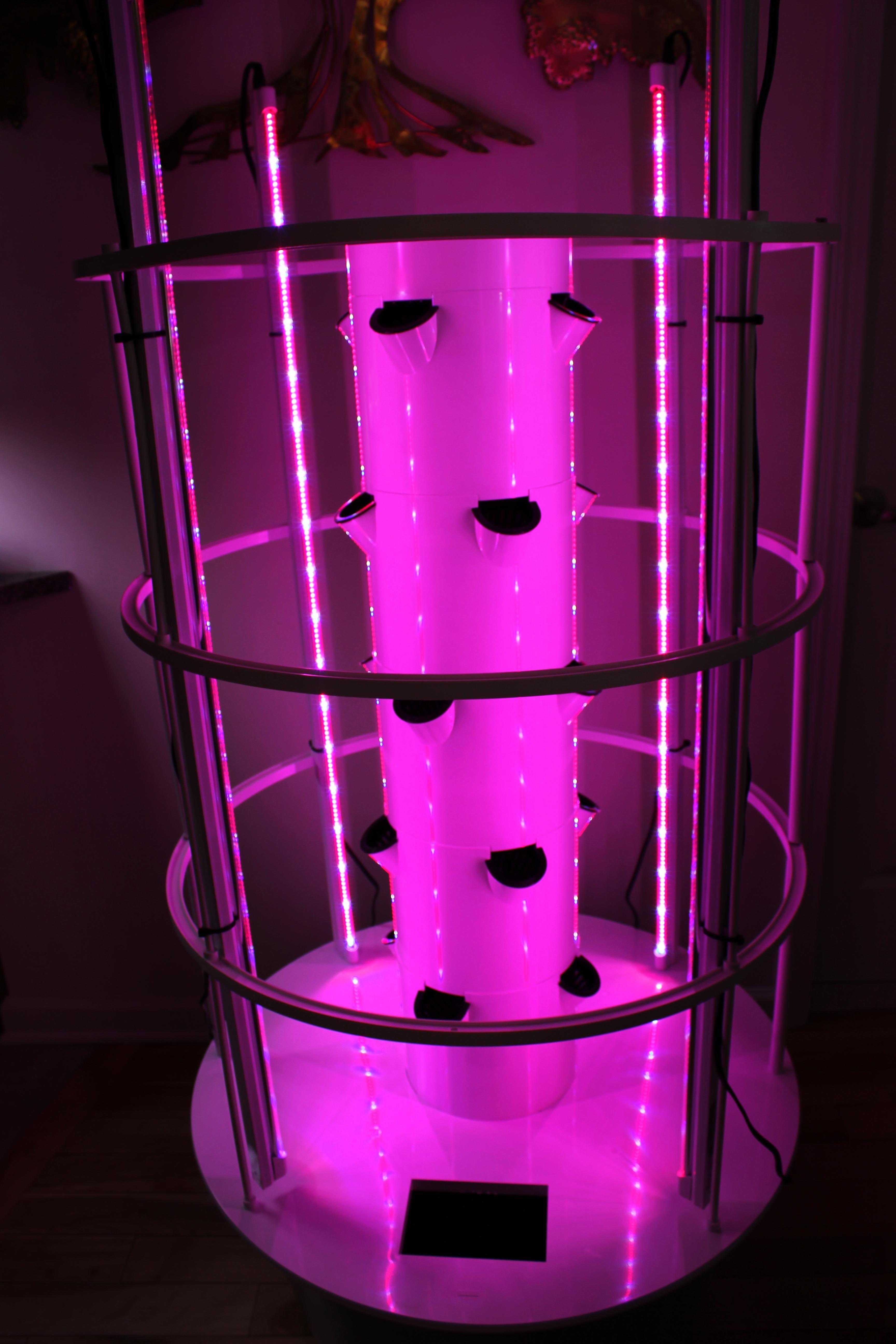 Aeroponic Indoor Tower Garden Setup Using Pink LED Grow