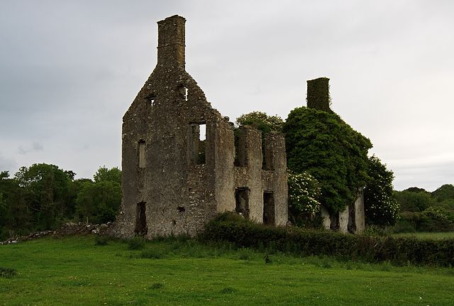Castles of Leinster: Ballysheil, Offaly by Mike Searle - near to Bellmount, Killowney and  Noggusboy, Offaly, Ireland