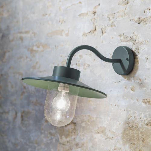 applique ext rieure col de cygne en acier couleur thym st. Black Bedroom Furniture Sets. Home Design Ideas