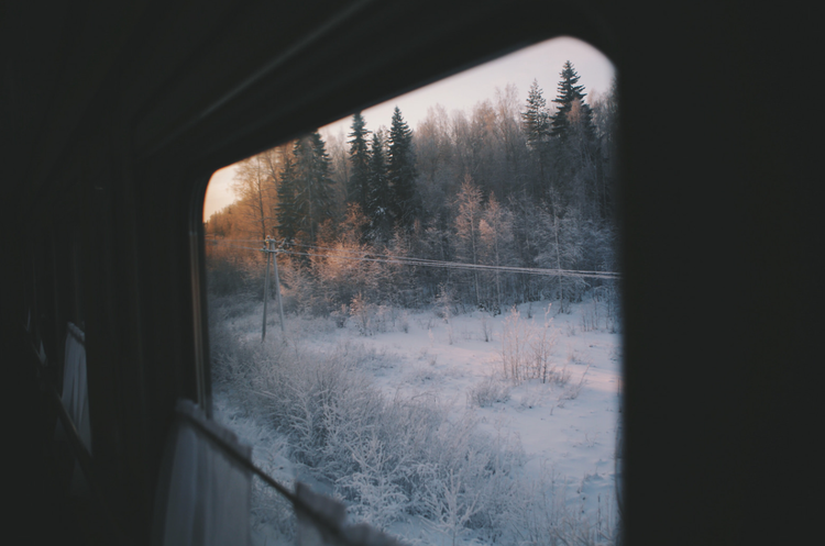 Indie Forest Nature Snow Tree Tumblr Winter Cold Travel Train Https Weheartit Com Entry 325577489 Winter Aesthetic Photo Scenery