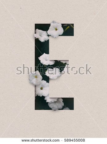 Unique Letter E alphabet made of real blooming flowers and leaves with paper cut. Illustration of floral alphabet collection for design project, poster, card, invitation, brochure and scrapbook