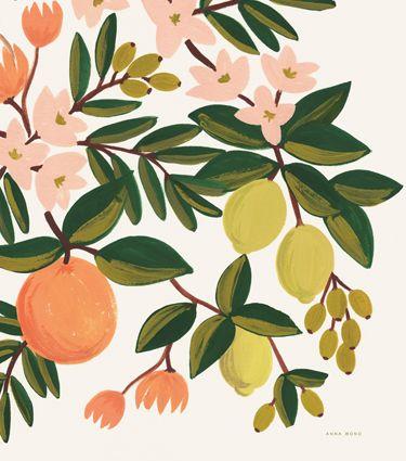 Citrus Floral Print #CitrusInspired #BBJLinen #BBJTableFashions