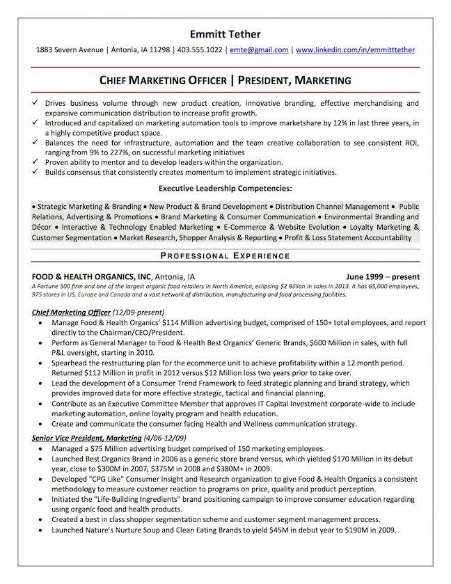 Top Executive Resume Writing Examples Senior Level Executive Resume Resume Writing Examples Resume Examples