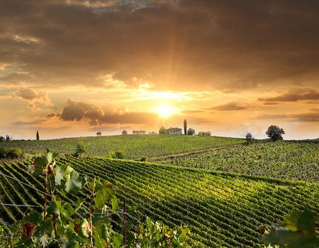 Tuscany – Tour Tuscany Chianti & Florence - small group