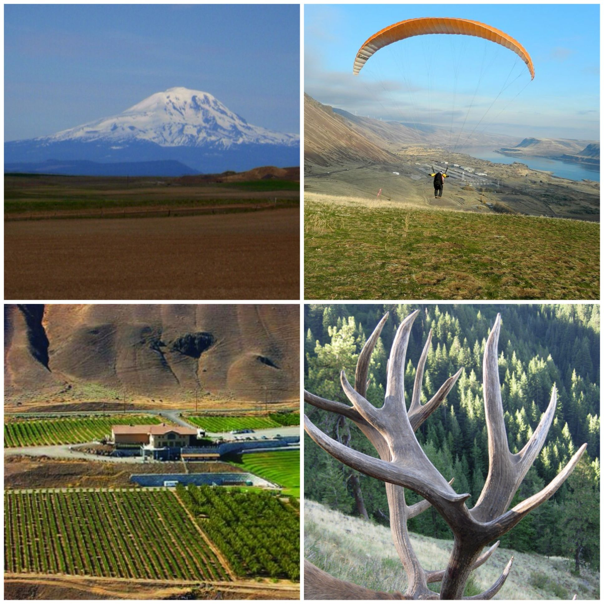 100 acres for sale in the Columbia River Gorge. Goldendale, WA . Income Tax free. Private Sale. jonpnw@gmail.com #realestate #tax #investment #cycling #paragliding #windsurfing #kiteboarding #winery #vineyards
