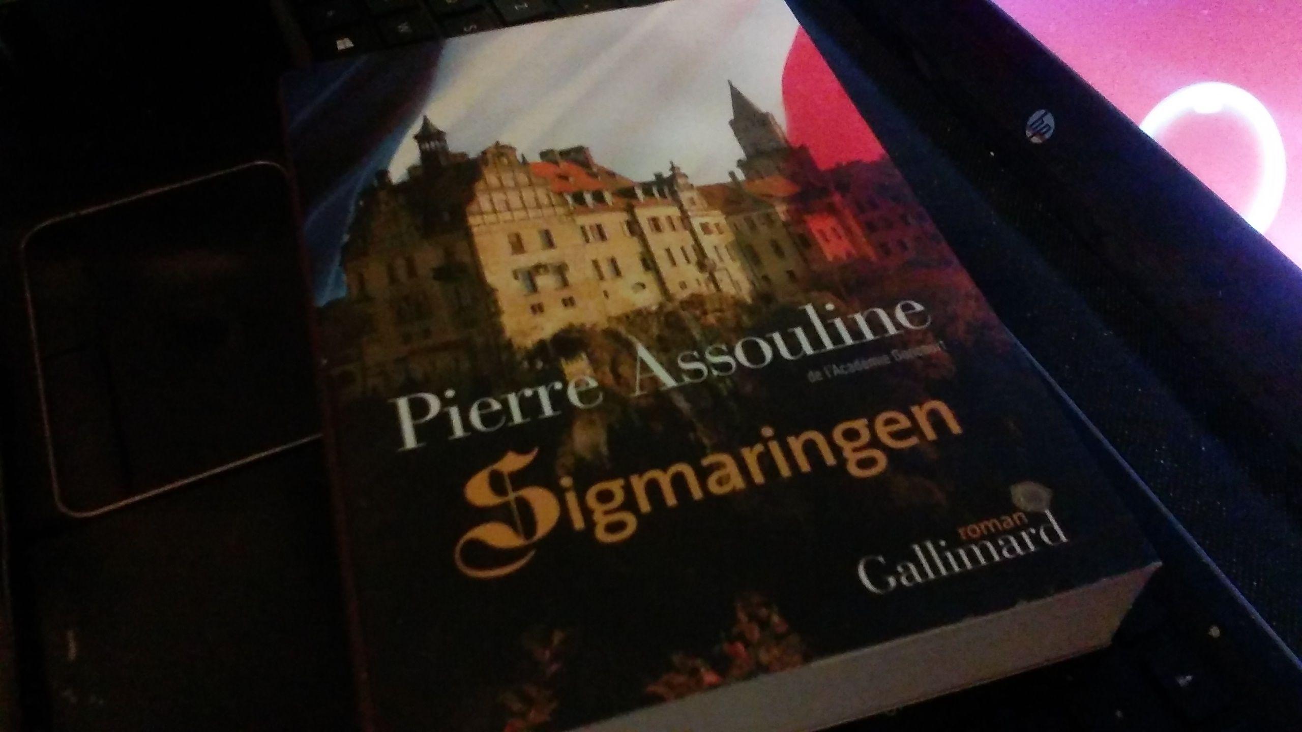 #MardiConseil #Sigmaringen #PierreAssouline @Gallimard  Le majordome nous raconte Vichy réfugié au château fin 1944