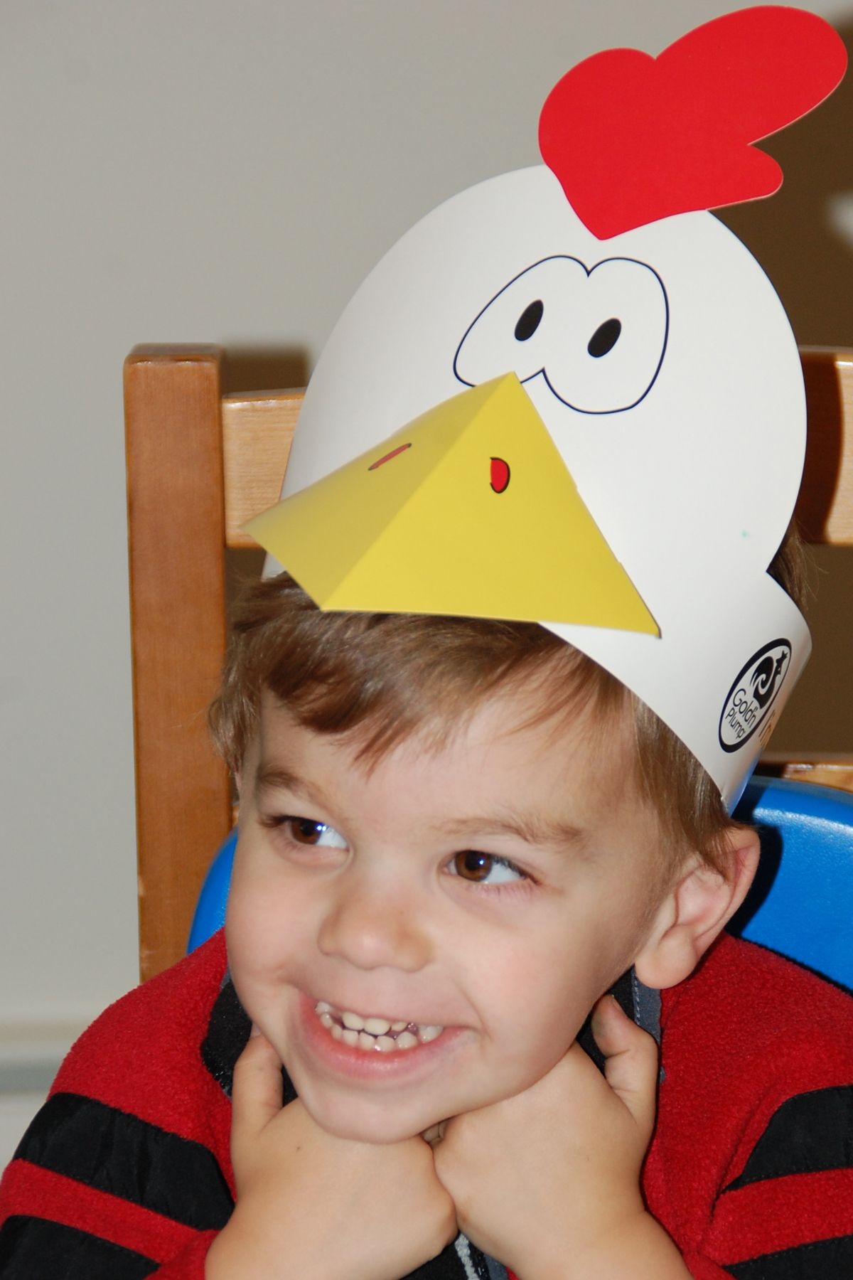 Chicken Costume   Baby chicken costume, Chicken costumes and ...
