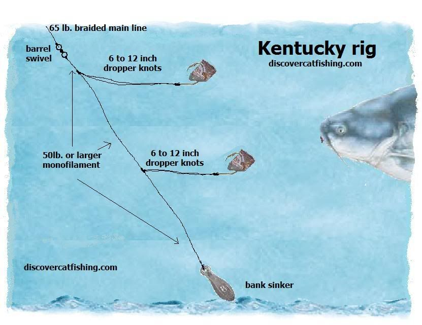 Best catfish rig how to tie your dropper knots for your for Best catfish rig for bank fishing