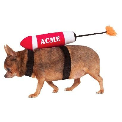 ACME Rocket Pet Costume $14.99 For Joey.