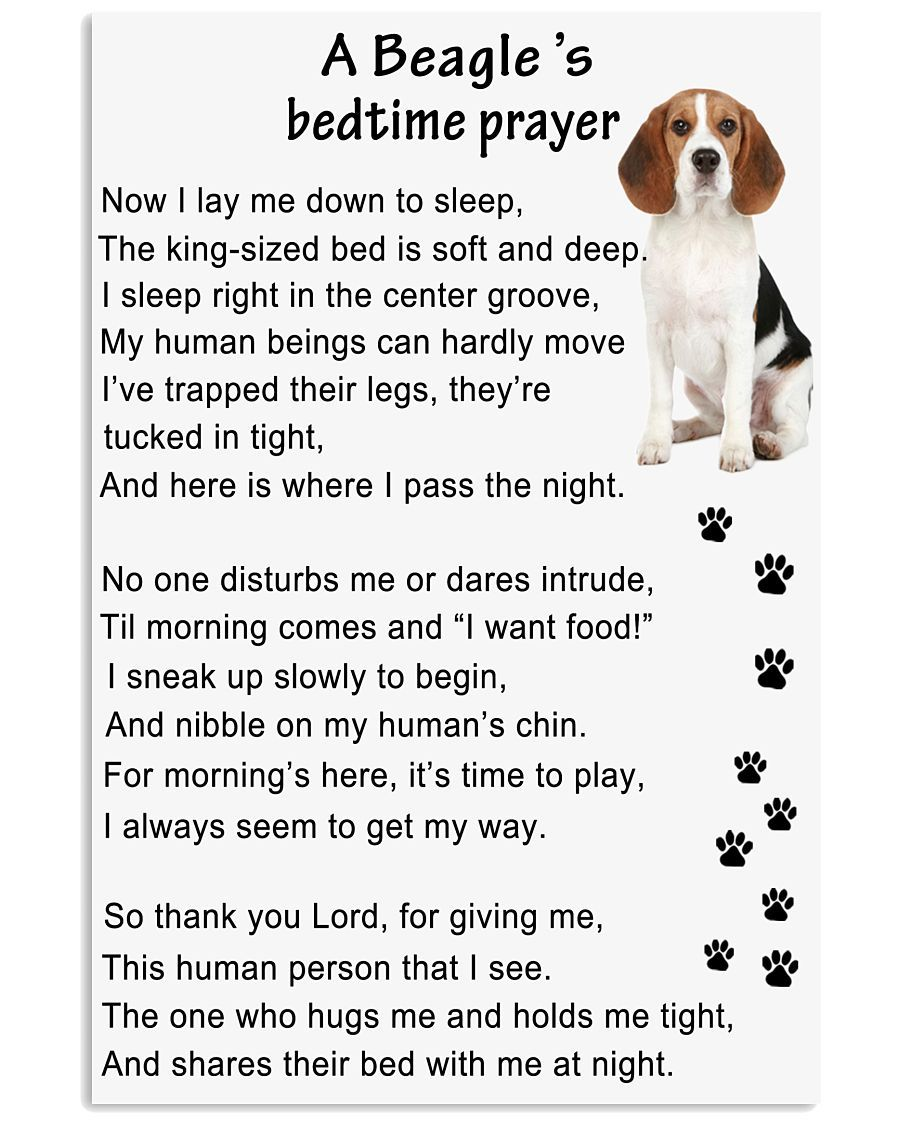 Beagle Bedtime Prayer With Images Beagle Dog Beagle Puppy