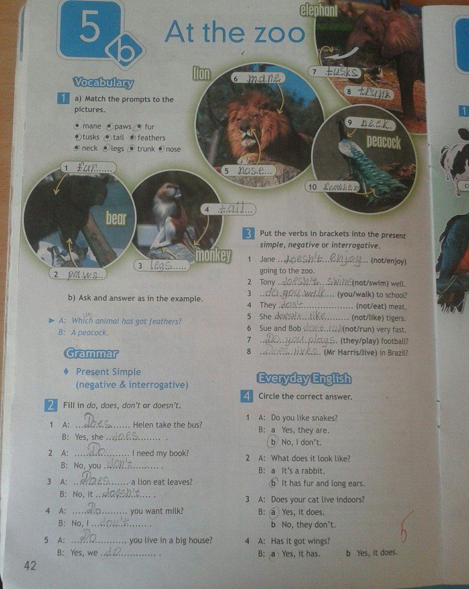 Гдз англиский 5 класс копылова рабочая тетрадь