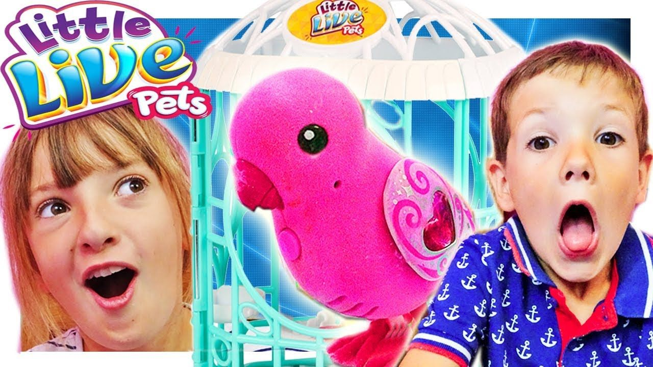 Little Live Pets Bird Kids Toy Unboxing Singing Learning To Count Cool Toys For Girls Kids Toys Little Live Pets