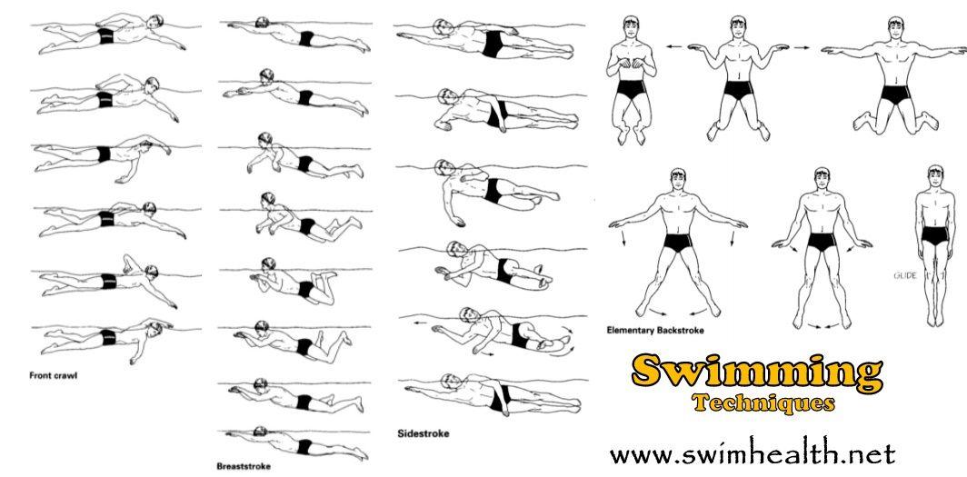 swimming techniques, swimming technique | Breaststroke游泳 ...