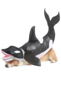 Animal Planet Orca Dog Costume, Black/White by California Costume Collections  ---  at BuyDogSweaters.com