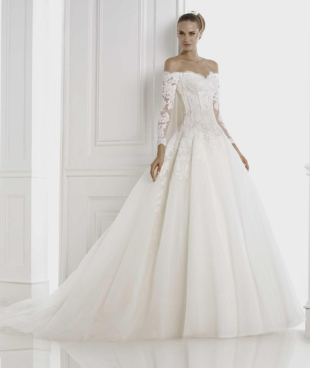 Princess Ball Gown Lace Patterns Illusion Neck Long Sleeved Long