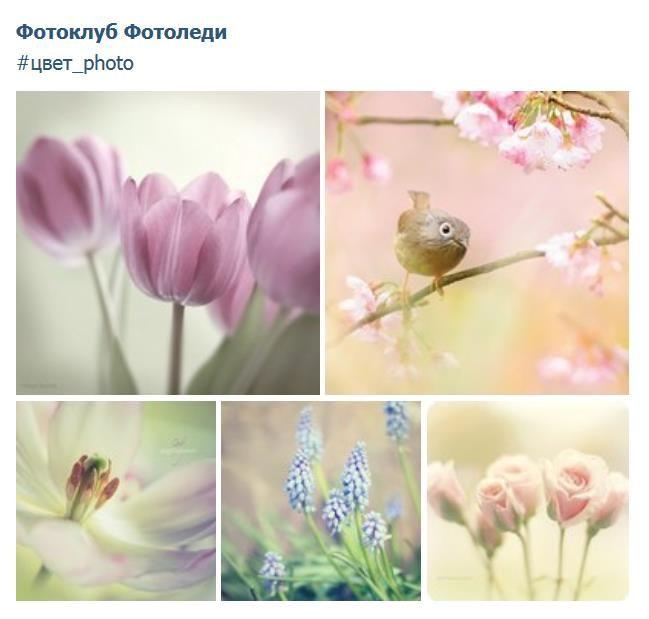 Как найти похожие фотографии в одной цветовой гамме ...