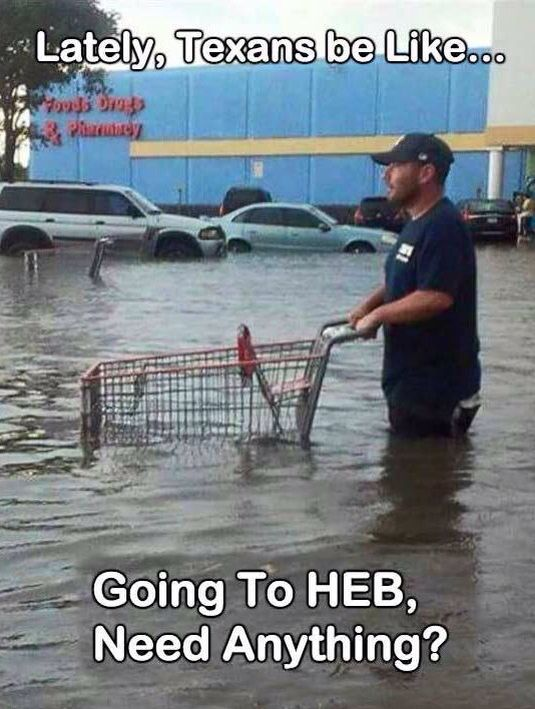 476cdf5714eecfd1349d81c00741ebc2 meanwhile in texas spring of 2015 true texan pinterest