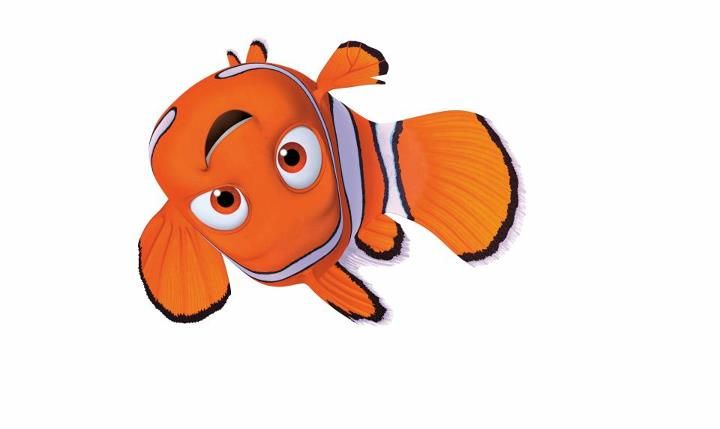 Pin By Cielo Anzola On Disney Finding Nemo Finding Nemo Stickers Disney Finding Nemo