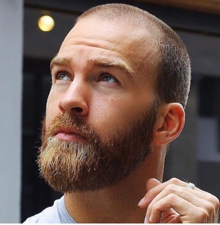 Beard Hombres Calvos Con Barba Barba Hombre Recortes De Barba