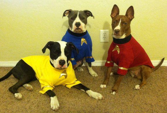 Star Trek Dog Costumes By Thecaliforniachi On Etsy Dog Costumes