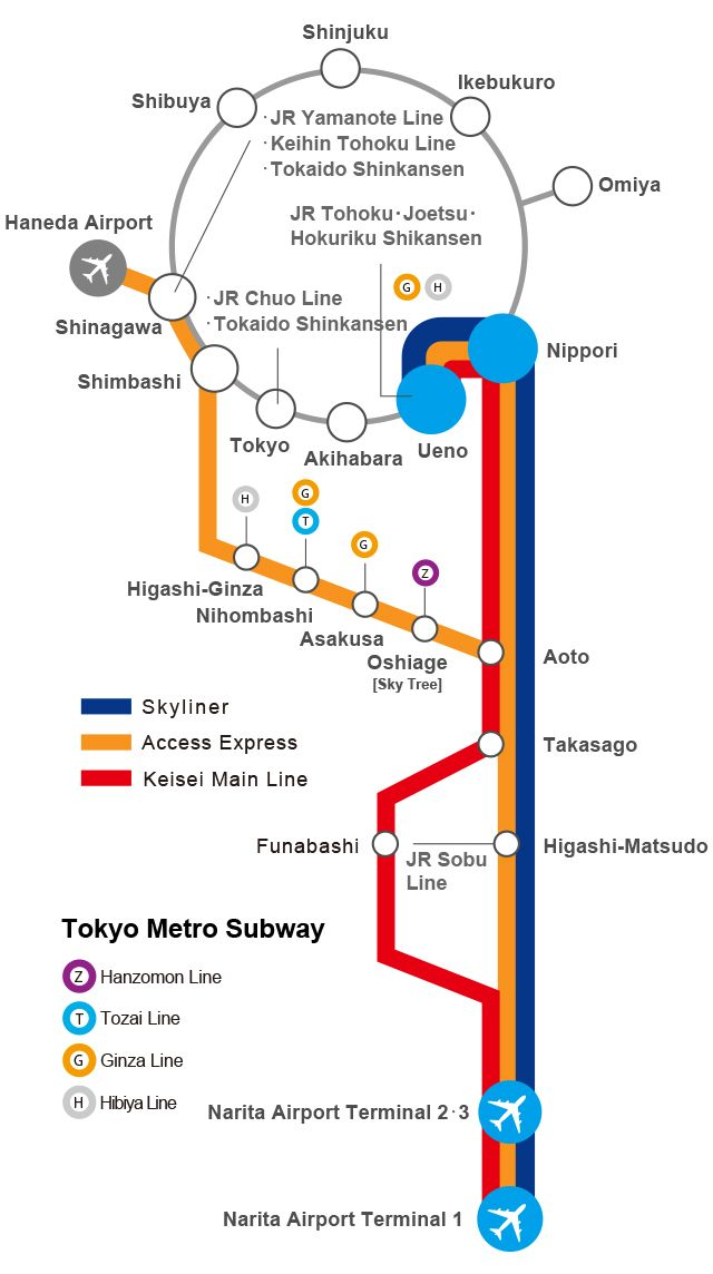 Route Map From Narita Airport To Downtown Tokyo With Images