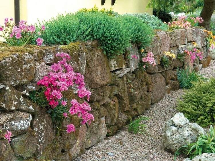 gartenmauer aus naturstein bepflanzen - stilvolle gestaltung, Garten seite