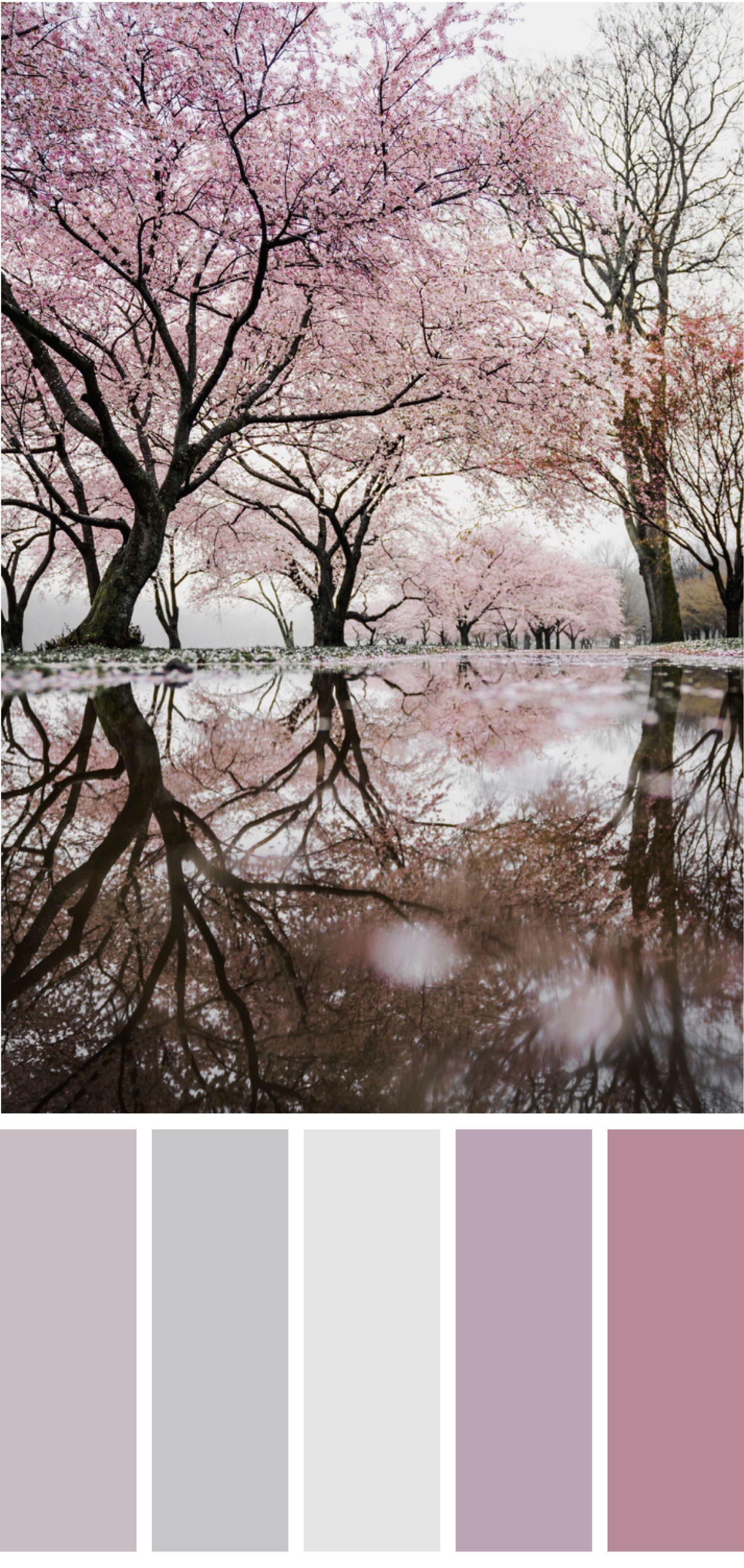 captivating relaxing bathroom color scheme   Relaxing muted colors in 2019   Room color schemes ...
